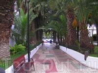 дорога от дома к роскошному пляжу Playa Jardin - имеет Голубой международный флаг - все удобства бесплатно - Душ, туалеты - и на улице м внутри, раздевалки ...