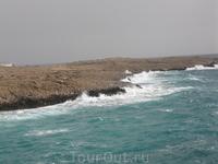 и таким бывает море Средиземное