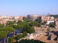 Вид на Колизей и Римский Форум со стороны Капитолийского холма.