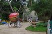 Экскурсия в Далат