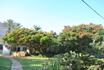 Мёртвое море, Эйн-Геди, мы жили в ботаническом саду