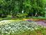 Ботанический сад в Мадриде расположился недалеко от моего обожаемого парка Ретиро. Его история началась 17 октября 1755 года, когда король Fernando VI приказал основать в Мадриде ботанический сад.