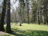 Парк в ТТ
