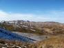 Алтайские виды