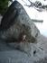 В пасти скалы-акулы, пляж отеля Берулия