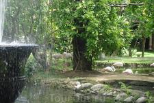 Бали/ парк птиц