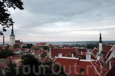 крыши Старого Таллина