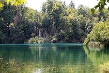 Плитвицкие озера нужно обязательно увидеть.