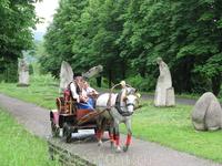 по парку можно покататься на лошадях