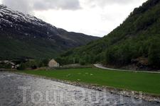 в регионе фьордов дороги проходят вдоль самих фьордов или рек, периодически скрываясь в тоннелях...