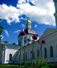 Церковь Алексия Цесаревича в Высоковске