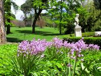 Еще при жизни герцогини в парке было высажено огромное количество цветов. И хотя парк за время существования переходил из рук в руки, все же его поддерживали ...