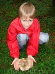 Вот такой гриб мы нашли!