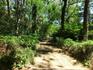 После смерти архитектора его наследники передали часть парка мэрии Мадрида, а в 1997 году парк получил звание исторического парка.