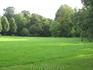 Поляна в парке