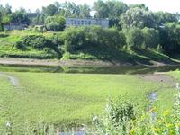 Река Черемуха близ устья
