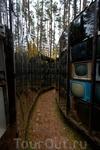 Парк Европы. Старые советские телевизоры. Если смотреть сверху - вся конструкция складывается в силуэт дерева. Рядом валяется памятник Ленину (а на фото ...