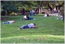 в парке на газонах заразная болезнь скосила толпы молодых людей!