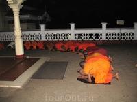 Монахи во время службы в храме.