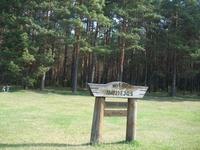 Музей леса находится недалеко от супермаркетов и рынка. Мы шли пешочком от Maxima