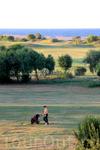 Игра в гольф во второй половине дня, когда солнце не так печёт самое время !