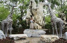 Сад миллионо летних камней