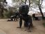 Знаменитые пупсы Давида Черного со штрихкодом вместо лица символизируют протест автора против абортов