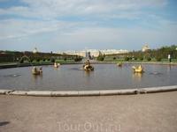 Началось мое путешествие в Петергофе