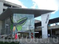 Музей Квинсленда