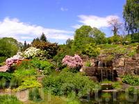 В саду есть также зона для пикника.Вообще,мы так поняли,что норвежцы большие любители пикников и во всех парках и садах,где мы побывали,обязательно есть такая зона.Вот бы и у нас так,а то одни запреты