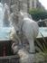 Фууу! Слон ты задолбал!!!)))