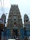 Обзорное путешествие по Шри-Ланке