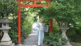 В саду Золотого павильона