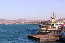 Порт. перевозка машин и людей. Много птиц