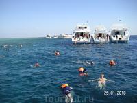 вода очень теплая! (экскурсия на остров Тобиа)