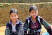 маленькие хмонги
