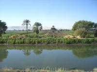 потрясающий вид: вода,пальмы, а на заднем фоне - пустыня