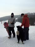 Горно-лыжный курорт Волчанска долина. Местный пес.