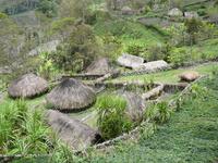Деревня племя Дани