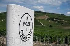 Дом шампанских вин Moët & Chandon