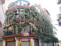 дом с кактусами