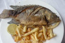 Рыбка из Киннерета.