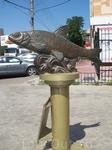 """Скульптура""""Вобла-Кормилица"""".Установлена в честь небольшой рыбки,которая спасла во время Великой Отечественной Войны от голода тысячи людей."""