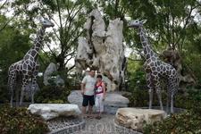 Парк многолетних камней