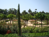 Малага. Парк