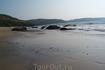 И снова пляж