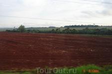 Почва в Бразилии красного цвета, а лужи после дождя морковного