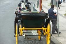 """Весь общественный транспорт в Испании должен иметь лицензию, что подтверждается вот такой табличкой """"SP"""". Коляски для катания туристов - не исключение ..."""