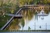Фотография Лебединое озеро