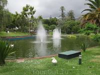 """Пруд в парке """"Санта-Катарина"""""""